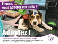 Campagne de la Conf�d�ration Nationale des SPA de France � D�fense de l�animal